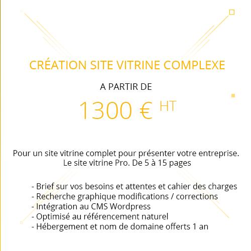Site vitrine wordpress pro